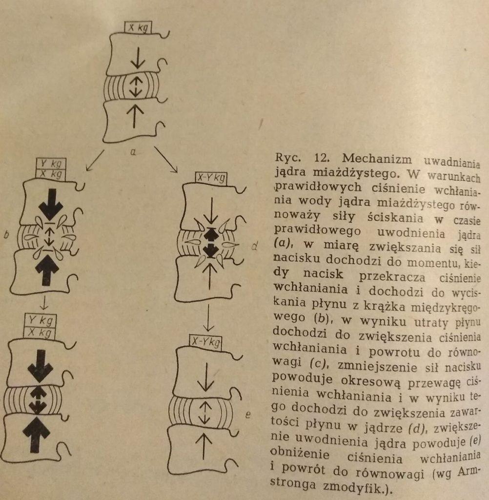 mechanika krążka